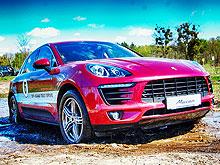 Украинцы покупают более дорогие автомобили, чем россияне