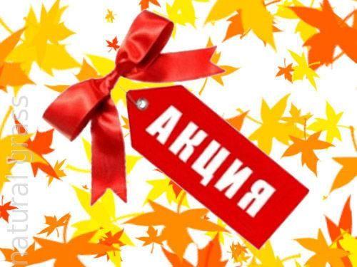 Осенний урожай скидок. Какие акции сейчас проходят в автосалонах