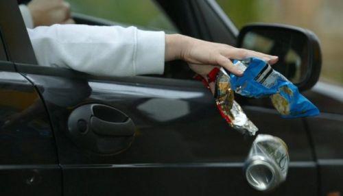 В Украине могут увеличить штрафы за выброшенный из авто мусор