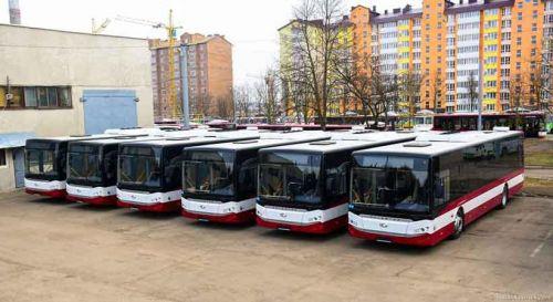 Ивано-Франковск закупит еще одну партию турецких автобусов - Ивано-Франковск