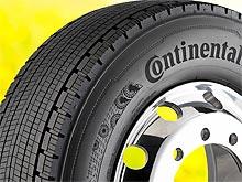 Continental применяет каучук из одуванчиков в комплектующих для автомобилей