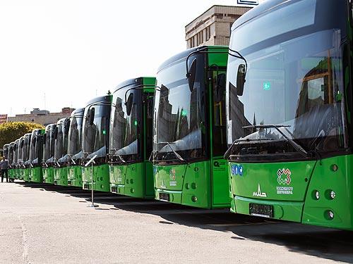 Житомир закупит еще 23 автобуса МАЗ
