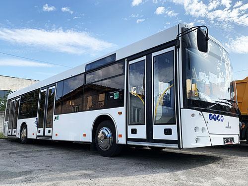 Частная компания закупила крупную партию автобусов МАЗ для перевозки сотрудников